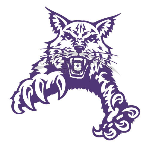 Customs Abilene Christian Wildcats 1997-2012 Partial Iron-on Transfers (Wall Stickers)NO.3677