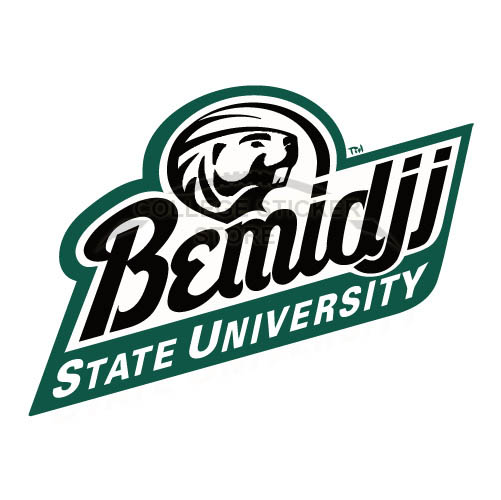 Customs Bemidji State Beavers 2004 Pres1 Iron-on Transfers (Wall Stickers)NO.3996