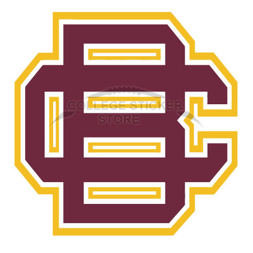 Customs Bethune Cookman Wildcats 2010 Pres Primary Iron-on Transfers (Wall Stickers)NO.4002