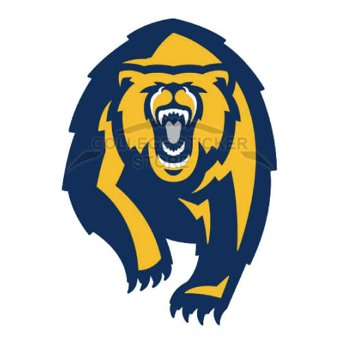 Customs California Golden Bears Iron-on Transfers (Wall Stickers)NO.4075
