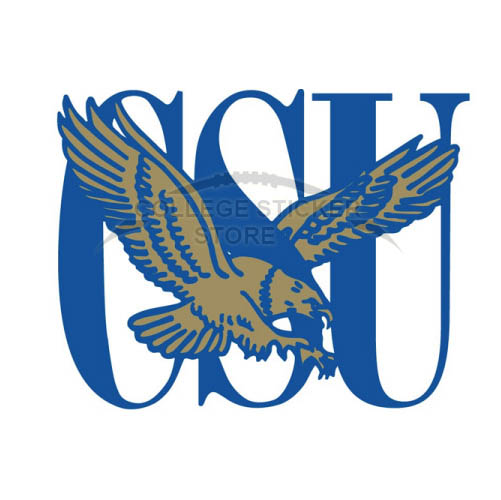 Customs Coppin State Eagles Iron-on Transfers (Wall Stickers)NO.4192