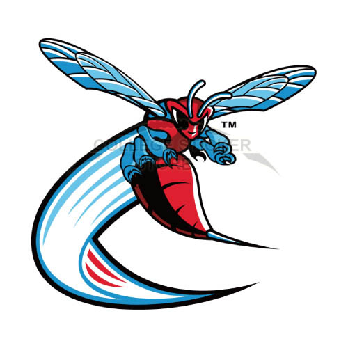 Customs Delaware State Hornets Iron-on Transfers (Wall Stickers)NO.4244