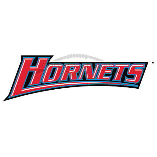 Customs Delaware State Hornets Iron-on Transfers (Wall Stickers)NO.4249