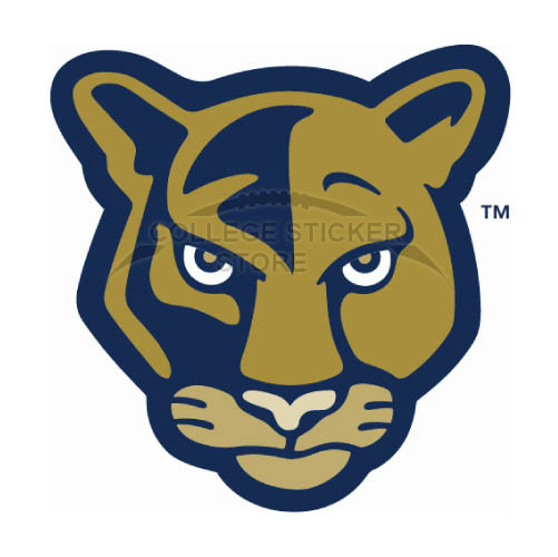 Design FIU Panthers Iron-on Transfers (Wall Stickers)NO.4364