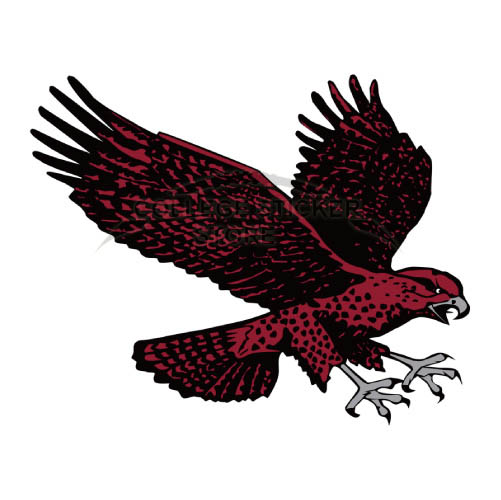 Personal Maryland Eastern Shore Hawks Iron-on Transfers (Wall Stickers)NO.4986