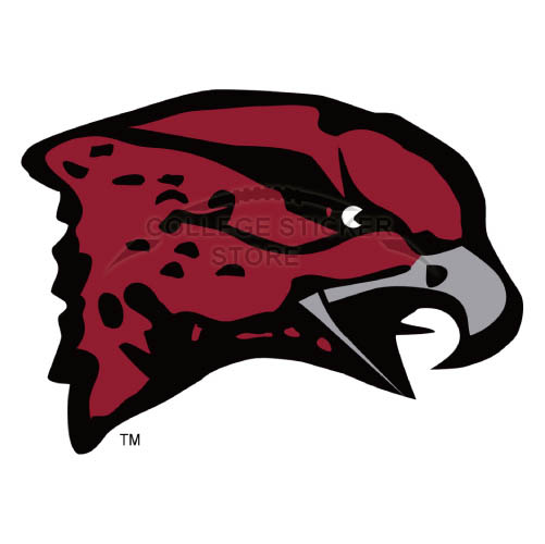 Personal Maryland Eastern Shore Hawks Iron-on Transfers (Wall Stickers)NO.4987