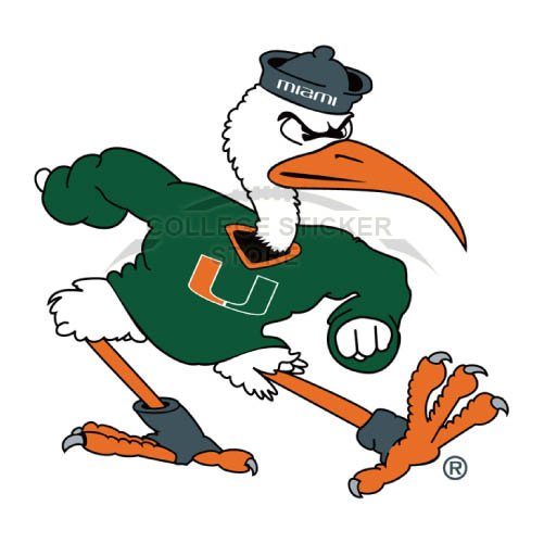Personal Miami Hurricanes Iron-on Transfers (Wall Stickers)NO.5041