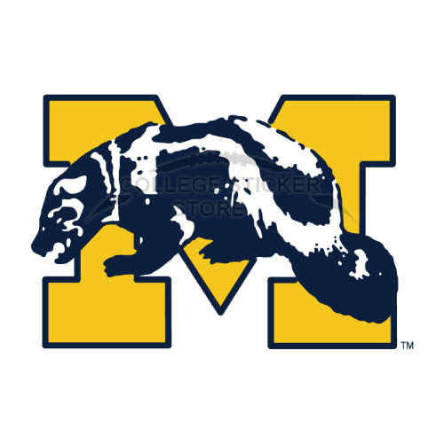 Personal Michigan Wolverines Iron-on Transfers (Wall Stickers)NO.5070