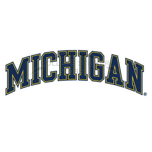 Personal Michigan Wolverines Iron-on Transfers (Wall Stickers)NO.5078