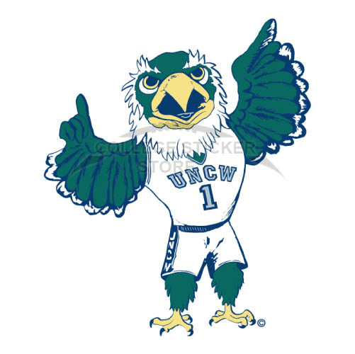 Personal NC Wilmington Seahawks Iron-on Transfers (Wall Stickers)NO.5367