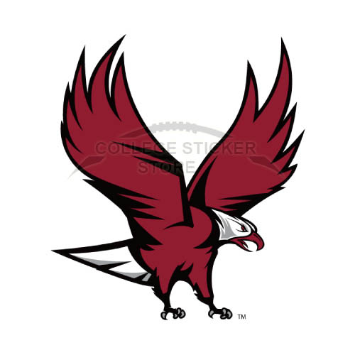 Personal NCCU Eagles Iron-on Transfers (Wall Stickers)NO.5370