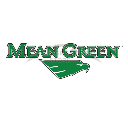 Personal North Texas Mean Green Iron-on Transfers (Wall Stickers)NO.5621