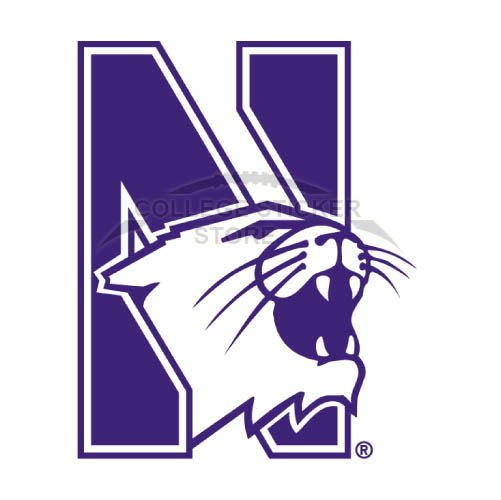 Personal Northwestern Wildcats Iron-on Transfers (Wall Stickers)NO.5703
