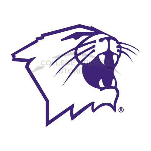 Personal Northwestern Wildcats Iron-on Transfers (Wall Stickers)NO.5705