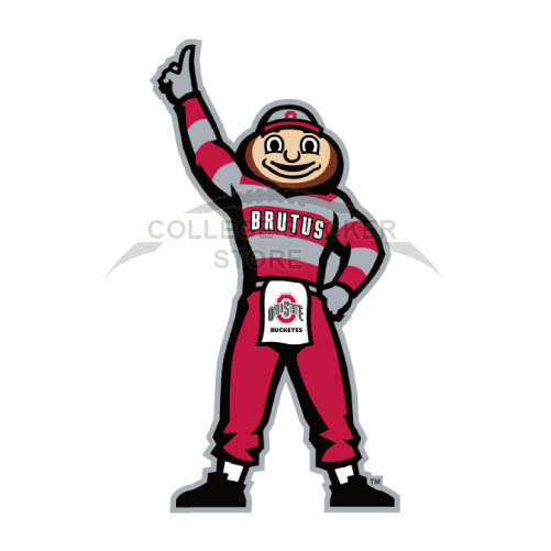 Personal Ohio State Buckeyes Iron-on Transfers (Wall Stickers)NO.5756