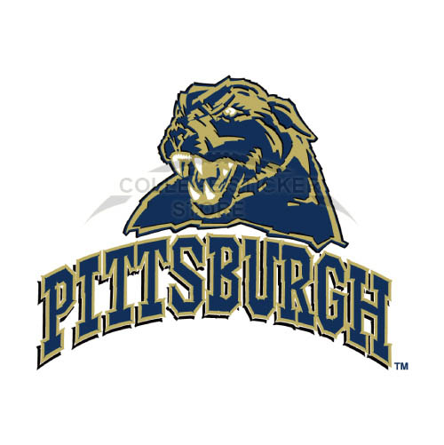 Homemade Pittsburgh Panthers Iron-on Transfers (Wall Stickers)NO.5895