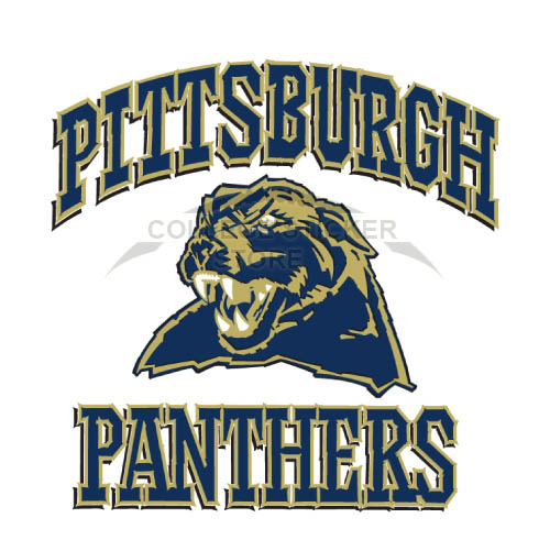 Homemade Pittsburgh Panthers Iron-on Transfers (Wall Stickers)NO.5900