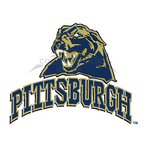 Homemade Pittsburgh Panthers Iron-on Transfers (Wall Stickers)NO.5904