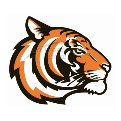 Homemade Princeton Tigers Iron-on Transfers (Wall Stickers)NO.5925