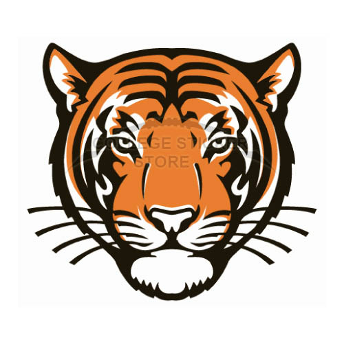 Homemade Princeton Tigers Iron-on Transfers (Wall Stickers)NO.5927