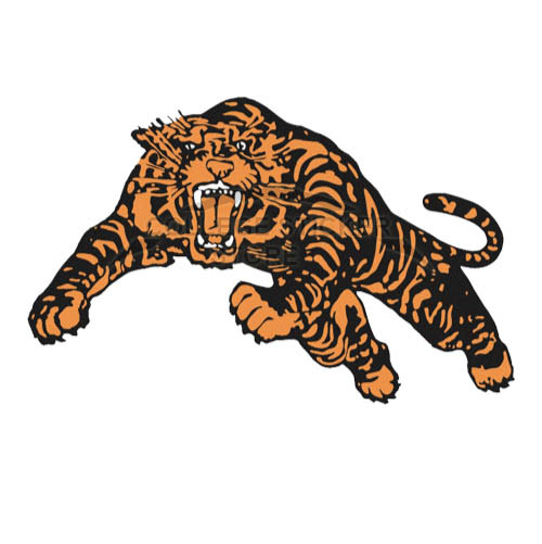 Homemade Princeton Tigers Iron-on Transfers (Wall Stickers)NO.5928