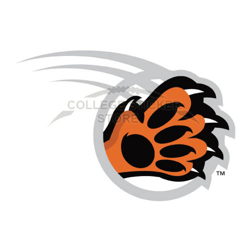 Homemade RIT Tigers Iron-on Transfers (Wall Stickers)NO.6018