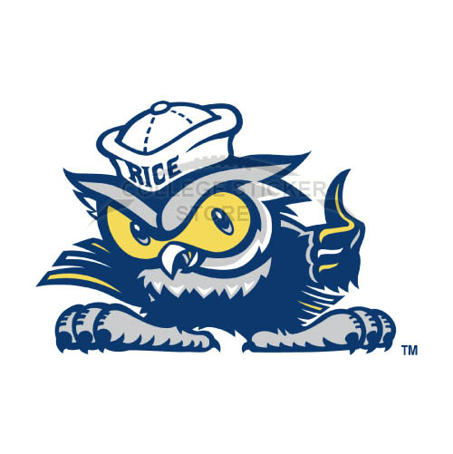 Homemade Rice Owls Iron-on Transfers (Wall Stickers)NO.5987