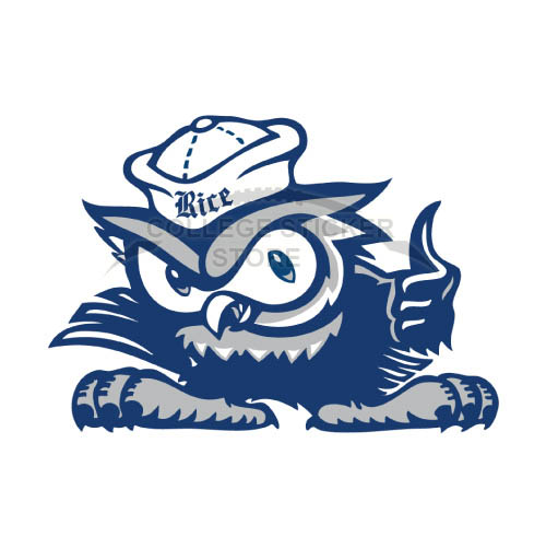 Homemade Rice Owls Iron-on Transfers (Wall Stickers)NO.5991
