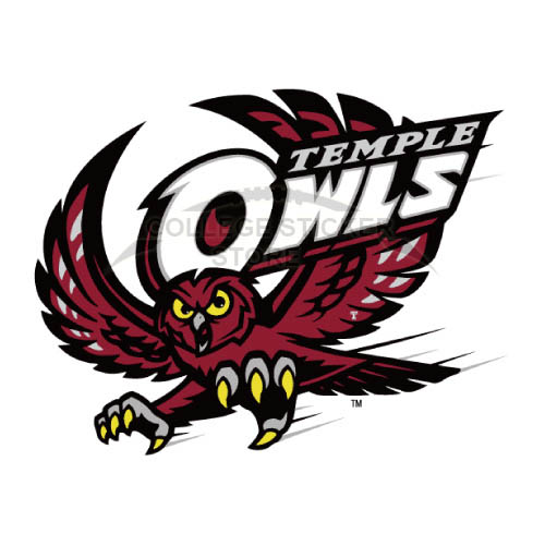 Homemade Temple Owls Iron-on Transfers (Wall Stickers)NO.6445