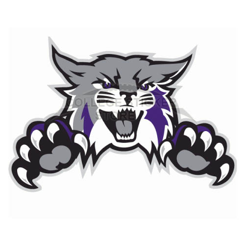 Diy Weber State Wildcats Iron-on Transfers (Wall Stickers)NO.6922