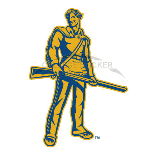 Diy West Virginia Mountaineers Iron-on Transfers (Wall Stickers)NO.6932