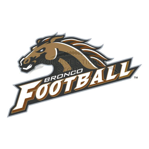 Diy Western Michigan Broncos Iron-on Transfers (Wall Stickers)NO.6990