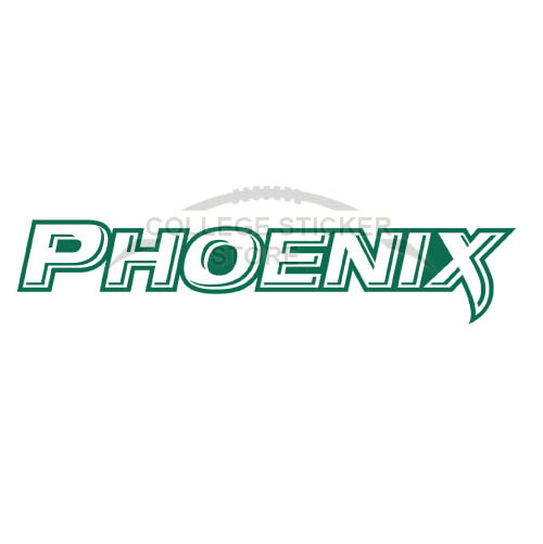 Diy Wisconsin Green Bay Phoenix Iron-on Transfers (Wall Stickers)NO.7033