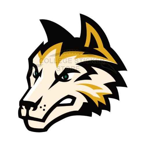Diy Wright State Raiders Iron-on Transfers (Wall Stickers)NO.7056
