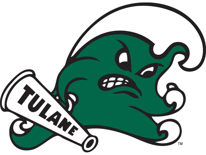 Diy Tulane Green Wave Iron-on Transfers (Wall Stickers)NO.6617